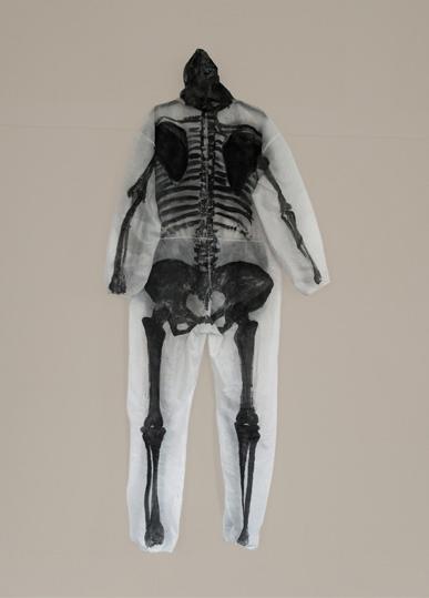 http://www.heikehamann.de/files/gimgs/110_skeleton-f-heikehamann.jpg